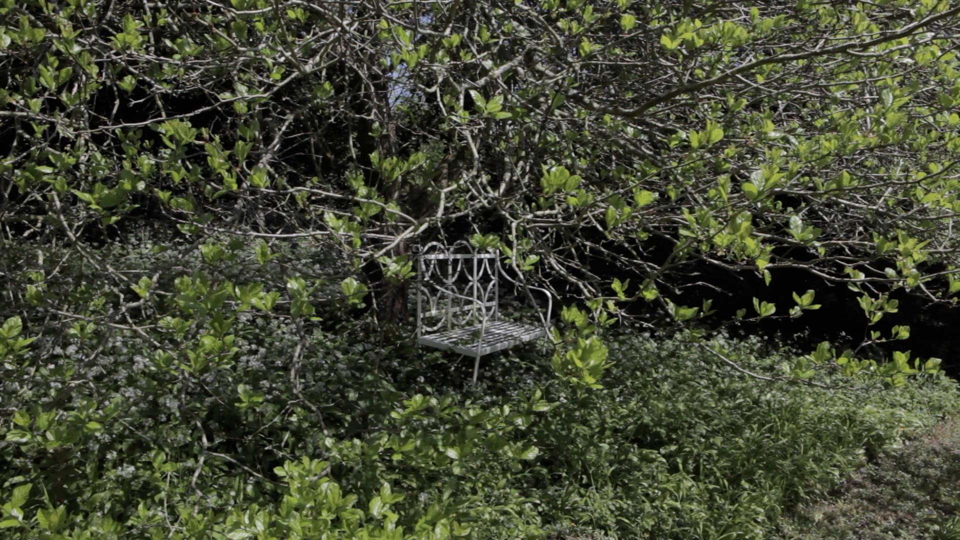 Great Gardens: A Writer's Retreat